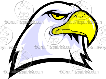 bald eagle head mascot eagle head clipart rh bradfitzpatrick com eagle head vector clipart eagle head mascot clipart
