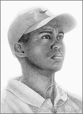 Tiger Woods Portrait | Tiger Woods Drawing | Draw Tiger