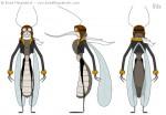 Cartoon Mosquito Character Design